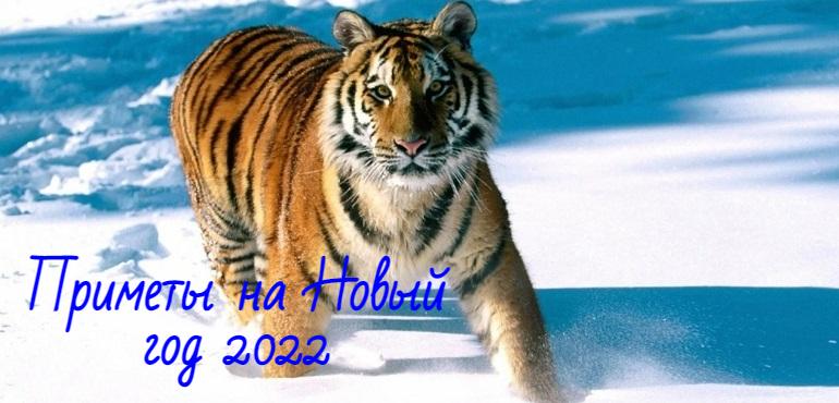 Приметы на Новый 2022 год Тигра: новогодние, как привлечь удачу и деньги