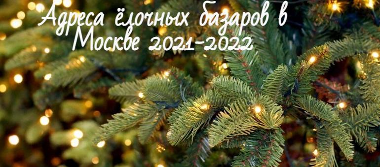Ёлочные базары 2021 2022 в Москве: адреса, когда открываются, примерные цены на елки