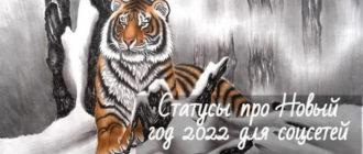 Статусы про Новый год 2022 красивые и со смыслом для соцсетей